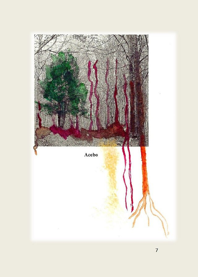 Los-arboles-solitarios-07.jpg